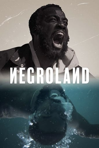Poster of Negroland