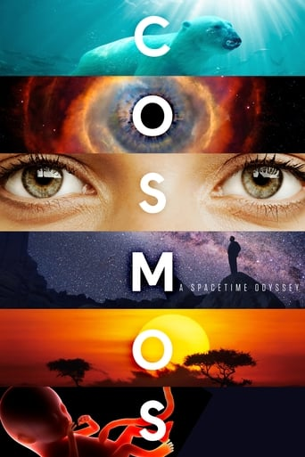 Poster of Cosmos: A Spacetime Odyssey