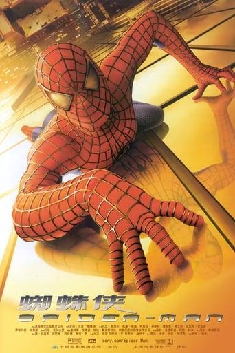 Poster of 蜘蛛侠