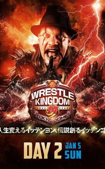 Poster of NJPW Wrestle Kingdom 14: Night 2