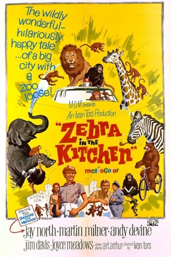 Poster of Zebra in the Kitchen