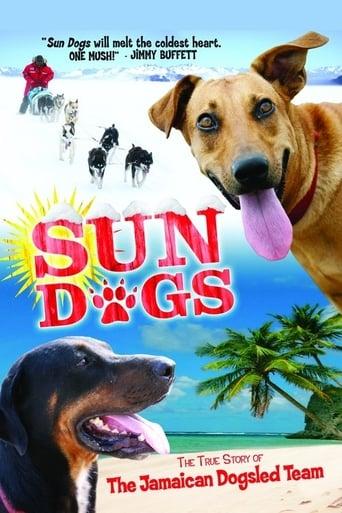 Sun Dogs