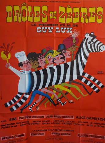Poster of Drôles de zèbres