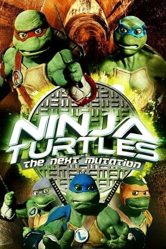 Poster of Ninja Turtles: The Next Mutation