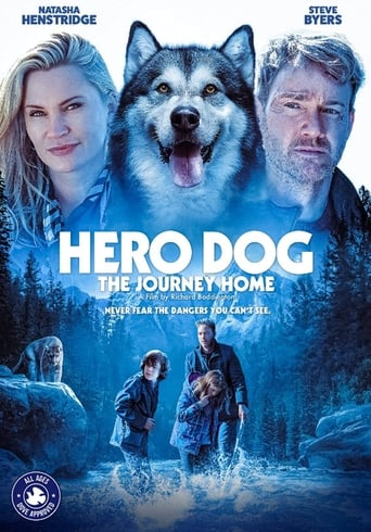 Poster Hero Dog: The Journey Home