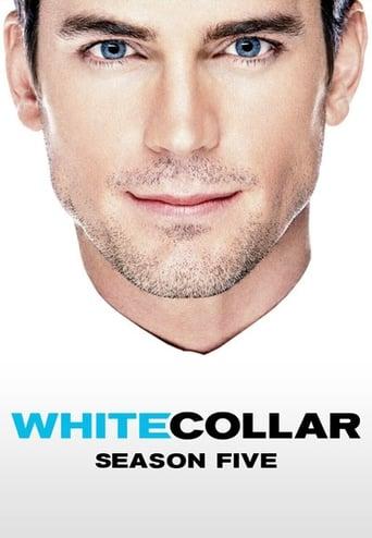 Aferistas / White Collar (2013) 5 Sezonas