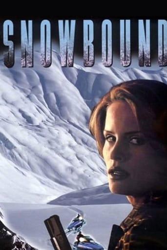 Poster of Atrapadas en la nieve