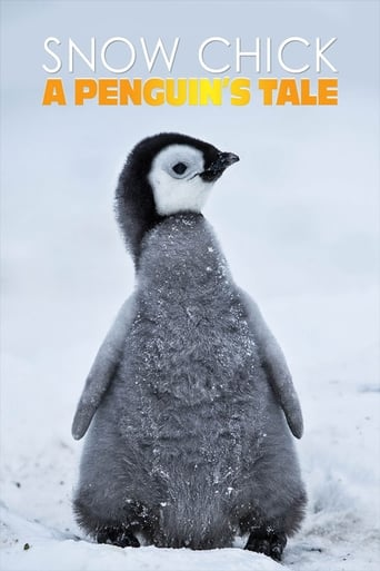 Snow Chick - A Penguin