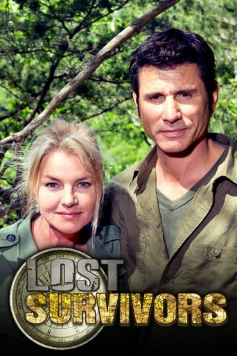 Lost Survivors poster