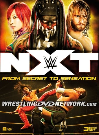 Poster of NXT: From Secret to Sensation