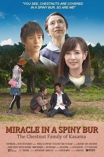 Miracle in Kasama