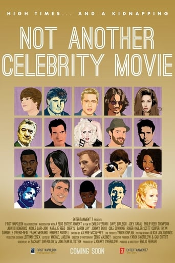 Poster of Not Another Celebrity Movie