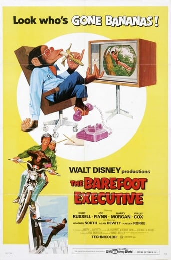 Poster of The Barefoot Executive