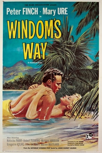 Poster of Windom's Way