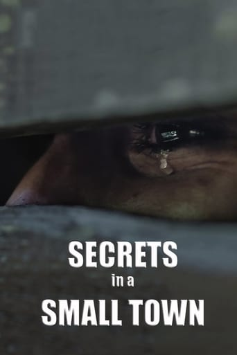 Secrets in a Small Town Poster