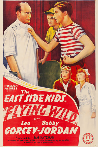 Poster of Flying Wild