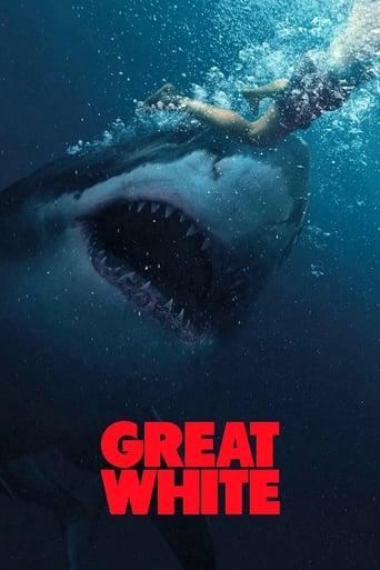 Poster Great White