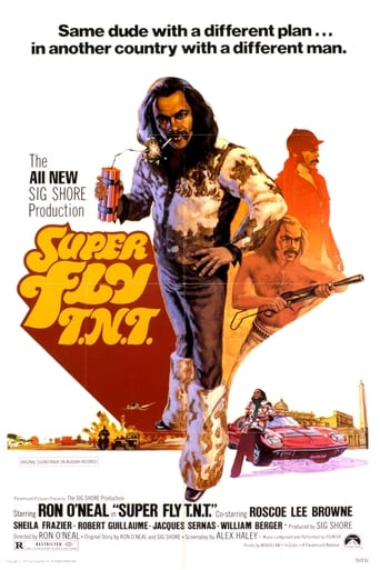 Poster of Super Fly T.N.T.