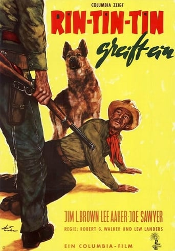 Poster of The Challenge of Rin Tin Tin