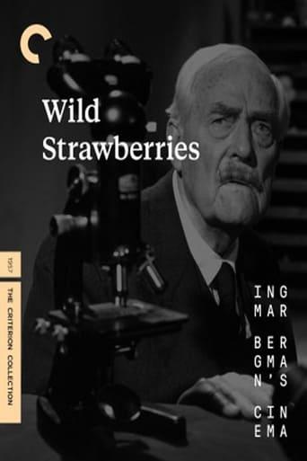 Poster Wild Strawberries