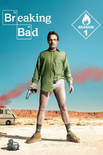 Bręstantis blogis / Breaking Bad (2008) 1 Sezonas