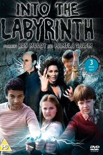 Poster of Dentro del laberinto