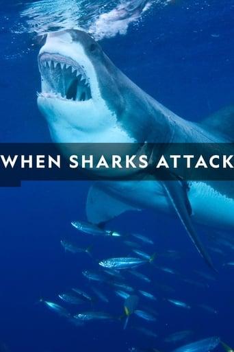 Haie auf Angriff