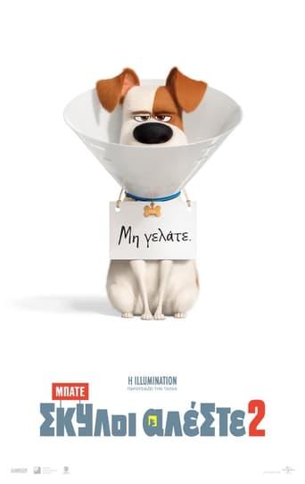 Poster of Μπάτε σκύλοι αλέστε 2