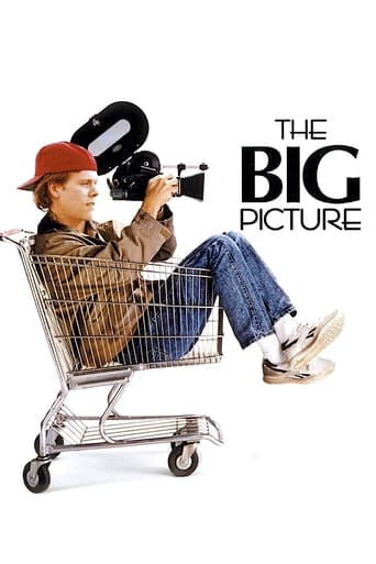 Poster of The Big Picture