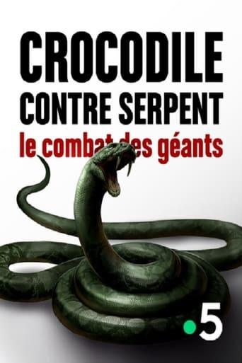 Crocodile contre serpent Le combat des géants