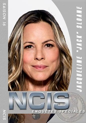 NCIS Investigações Criminais 16ª Temporada - Poster