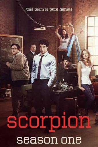 Skorpionas / Scorpion (2014) 1 Sezonas