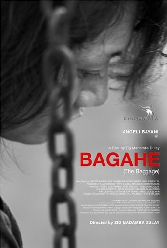 Poster of The Baggage