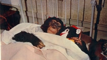 The Monkey's Uncle (1965)