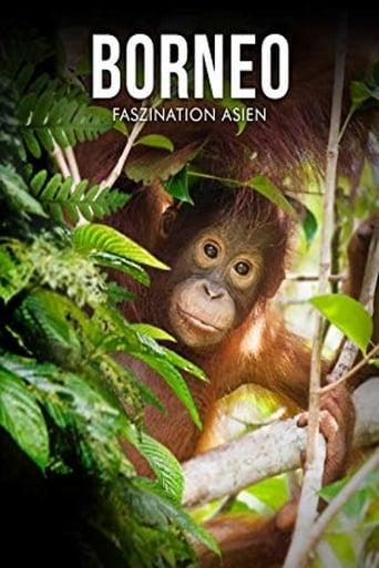 Borneo - Faszination Asien