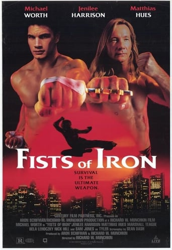 Poster of Fists of Iron