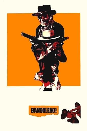 Poster of Bandolero!