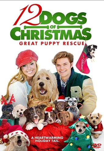 Poster of 12 Dogs of Christmas: Great Puppy Rescue