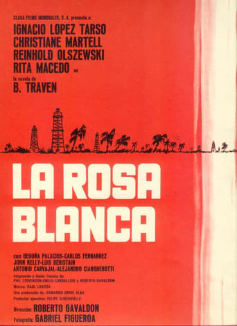 Poster of The White Rose