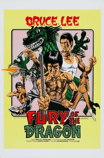 Poster of Fury of the Dragon