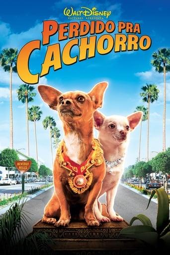 Perdido pra Cachorro - Poster