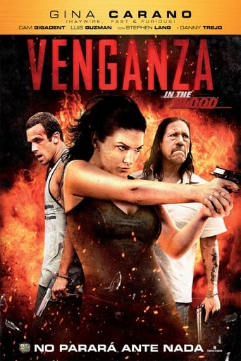 Poster of Venganza (In the Blood)