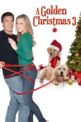 Poster of A Golden Christmas 3
