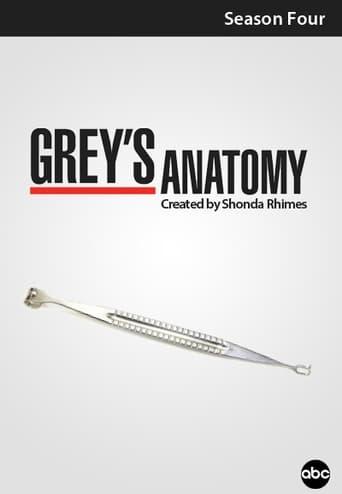 Grei anatomija / Grey's Anatomy (2007) 4 Sezonas