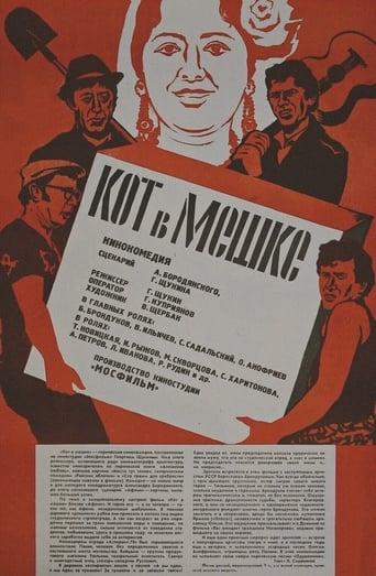 Poster of Кот в мешке