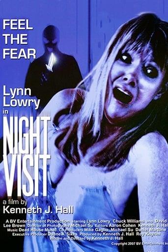 Poster of Night Visit
