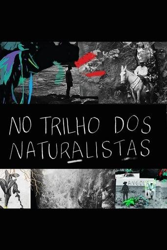 No Trilho dos Naturalistas: Angola