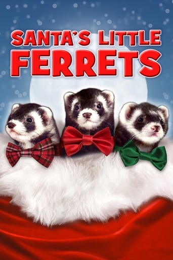 Poster of Santa's Little Ferrets