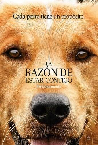la razon de estar  contigo  [1080p] [Latino] openload (2017)