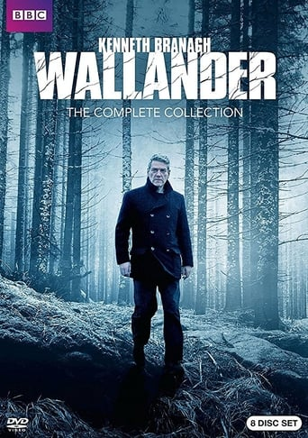 Poster of Wallander: The White Lioness